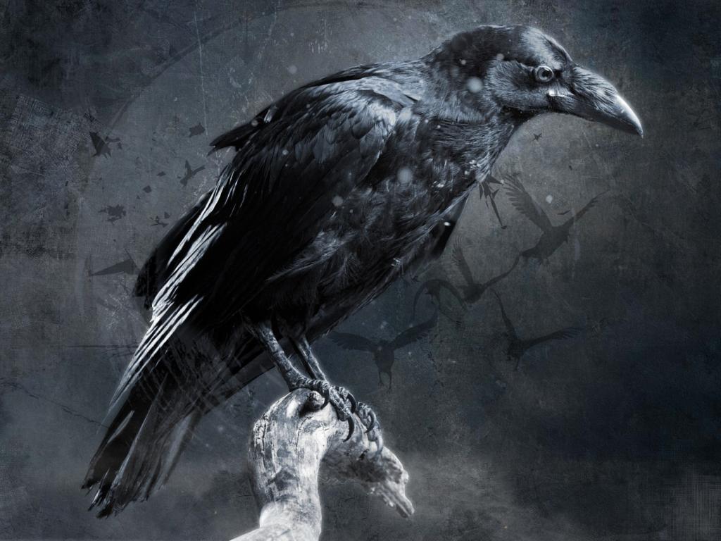 Desktop Wallpaper Raven, Crow, Bird, Art, Hd Image ...