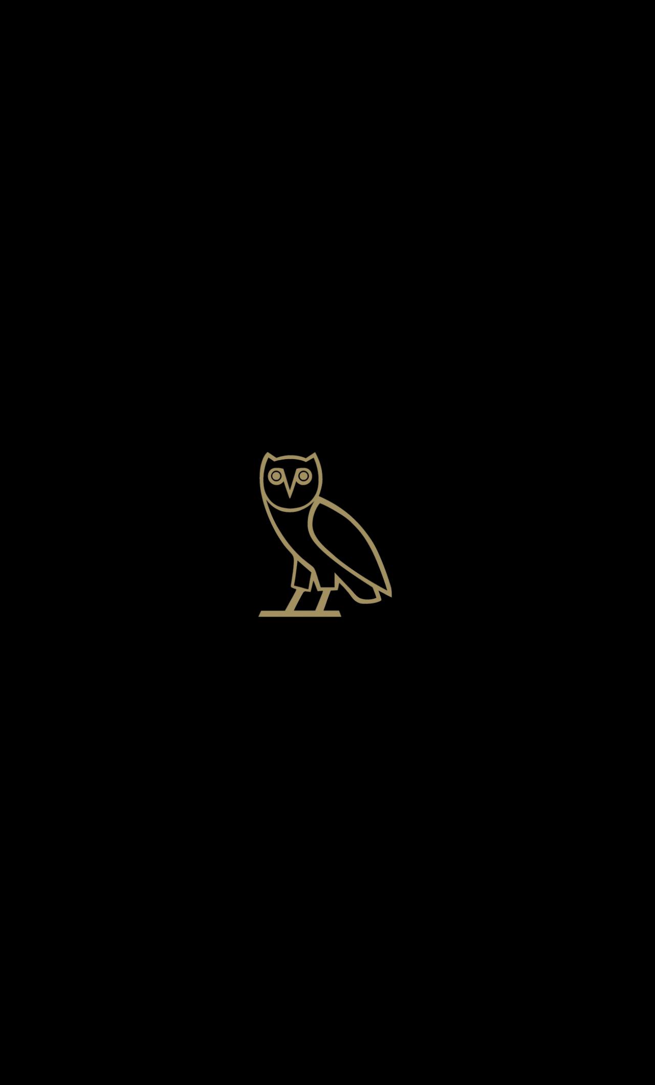 Download 1280x2120 Wallpaper Owl Bird Minimal Dark I