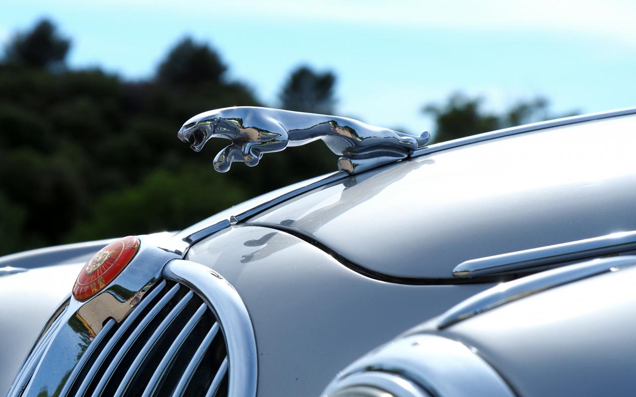 Download 1280x800 Wallpaper Jaguar Car Logo Car Full Hd Hdtv