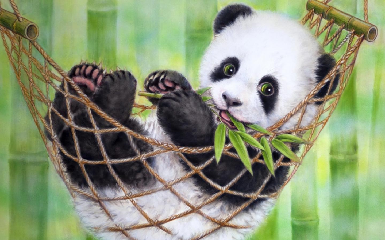 Панда картинки на рабочий стол