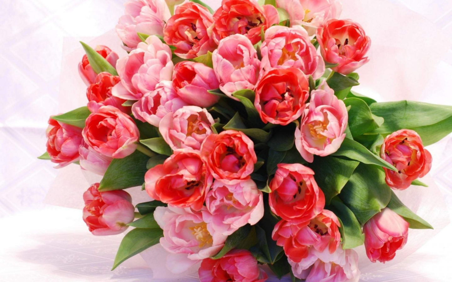 Desktop Wallpaper Red Tulips Bouquet Of Flowers Hd Image Picture Background Y5y Q8