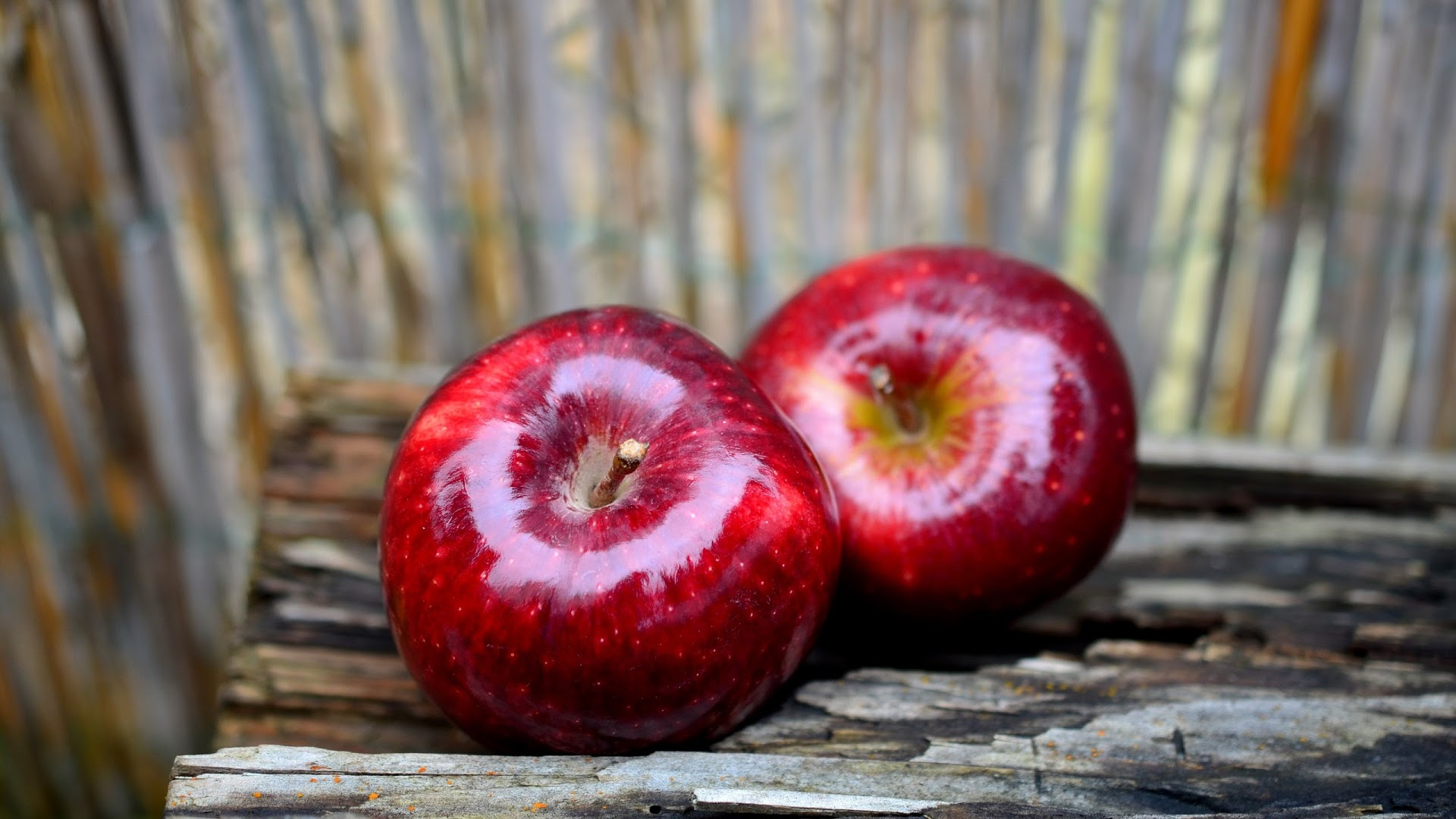 Download 1920x1080 Wallpaper Fruits Red Apples Full Hd Hdtv Fhd