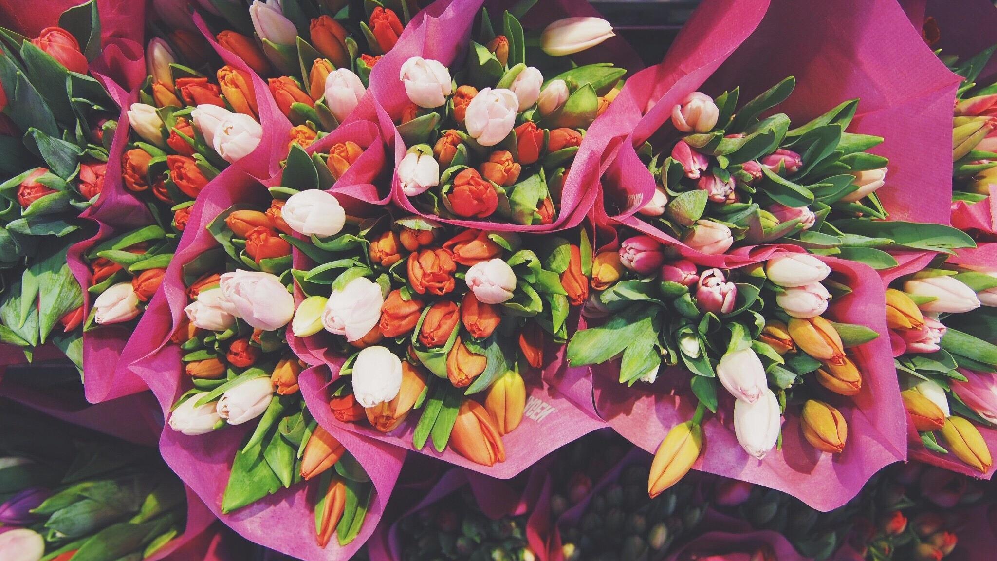 Desktop Wallpaper Tulips Flowers Bouquets Hd Image Picture Background Fio389