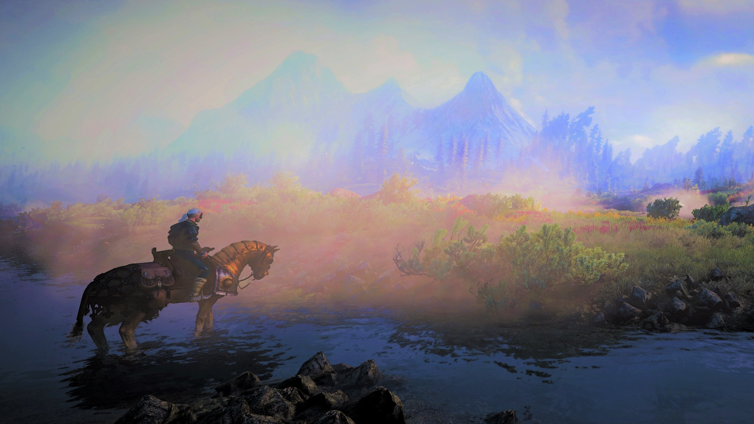 Download 2560x1440 Wallpaper The Witcher 3 Wild Hunt Video