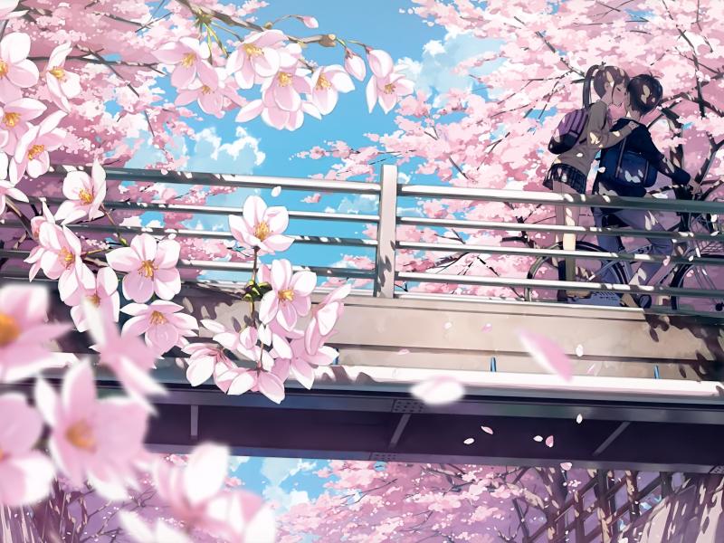 Desktop Wallpaper Cherry Blossom, Anime, Couple, Kiss, 4k ...