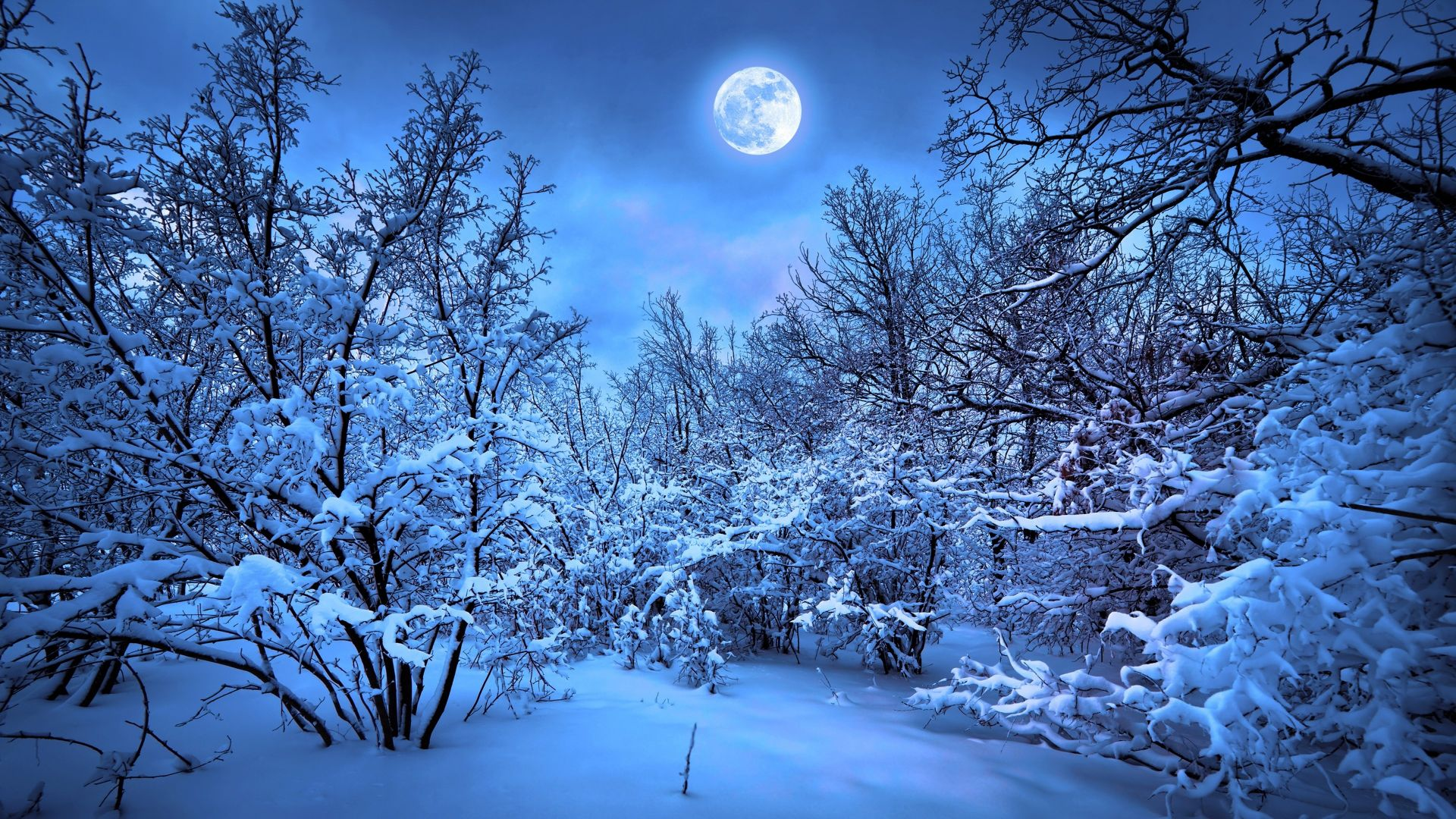 Desktop Wallpaper Winter Snow Moon Night Nature 4k Hd Image Picture Background 0c689f