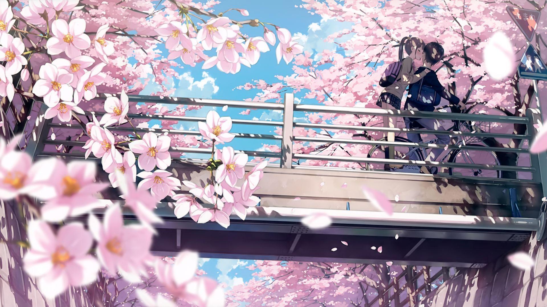 Desktop Wallpaper Cherry Blossom Anime Couple Kiss 4k