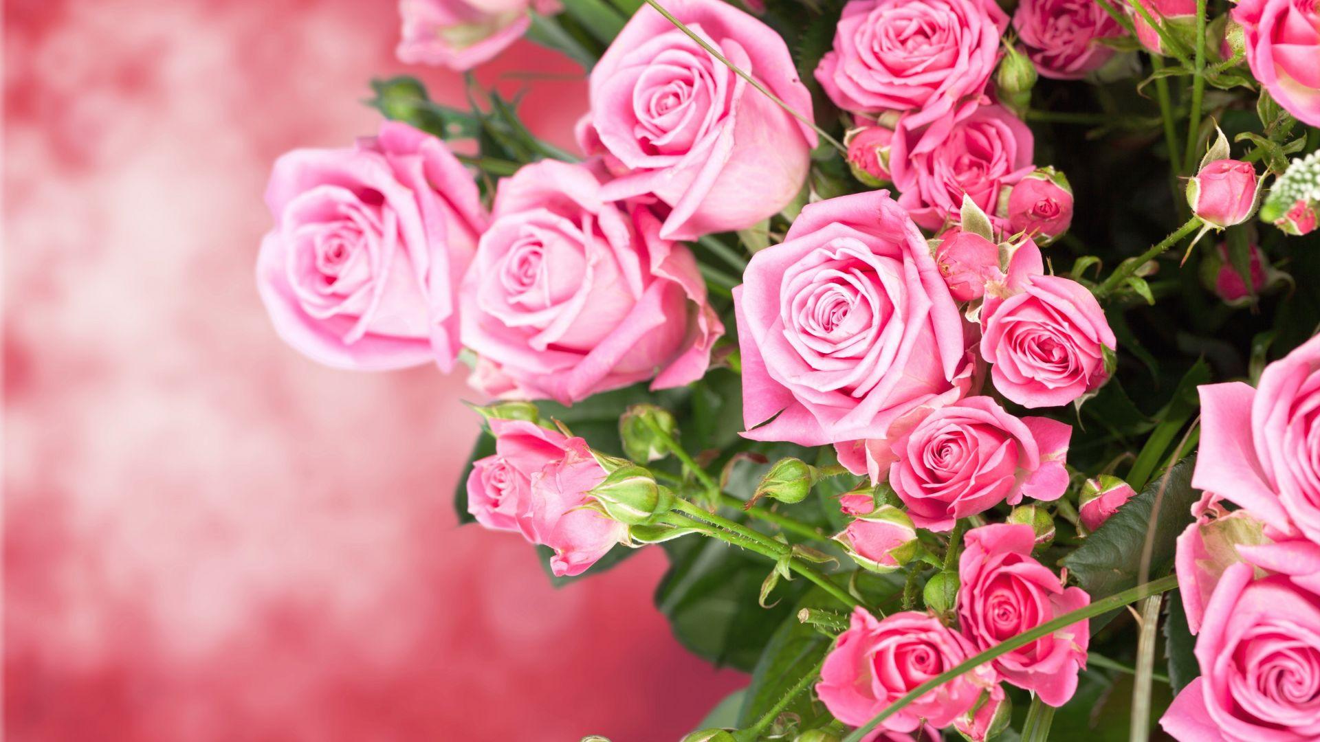 Pink Roses Bouquet Flowers Beautiful Wallpaper