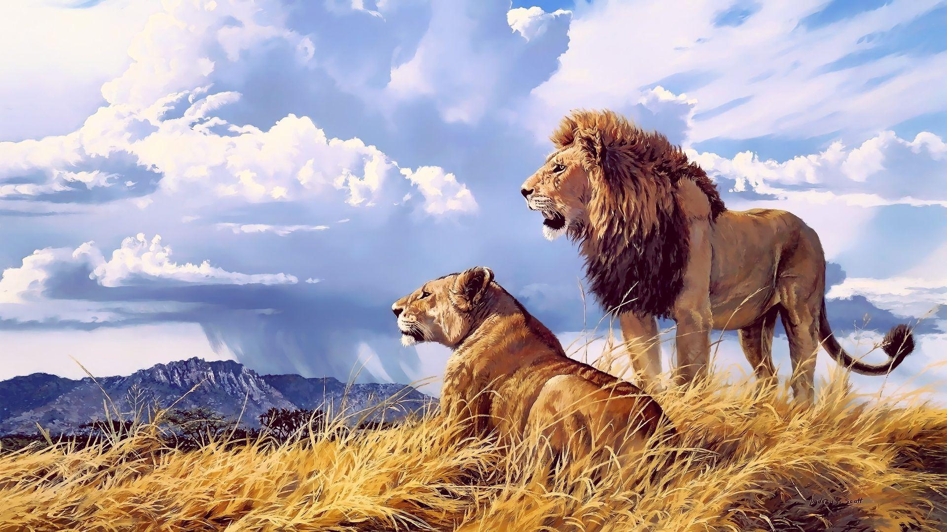 Desktop Wallpaper Lions Beast Animal Pair 4k Hd Image