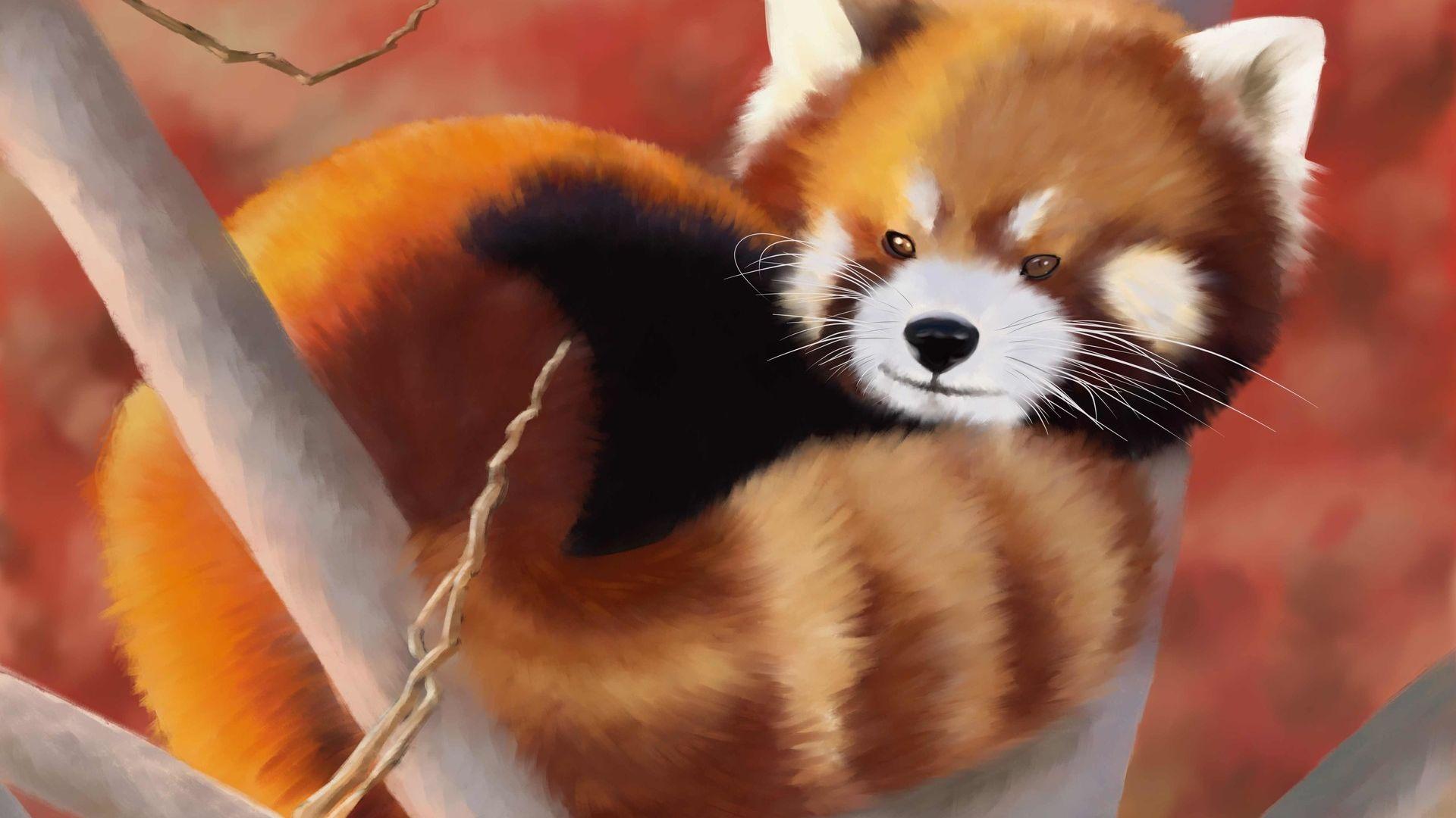 Desktop Wallpaper Red Panda Animal Art Hd Image Picture Background Diqsag
