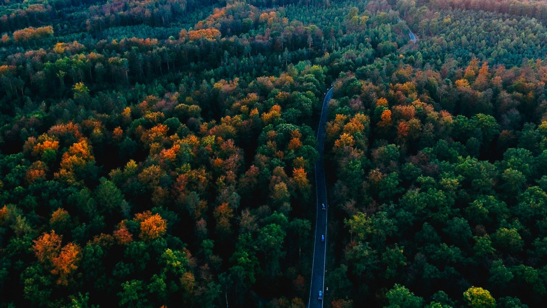 desktop wallpaper black forest germany aerial view road