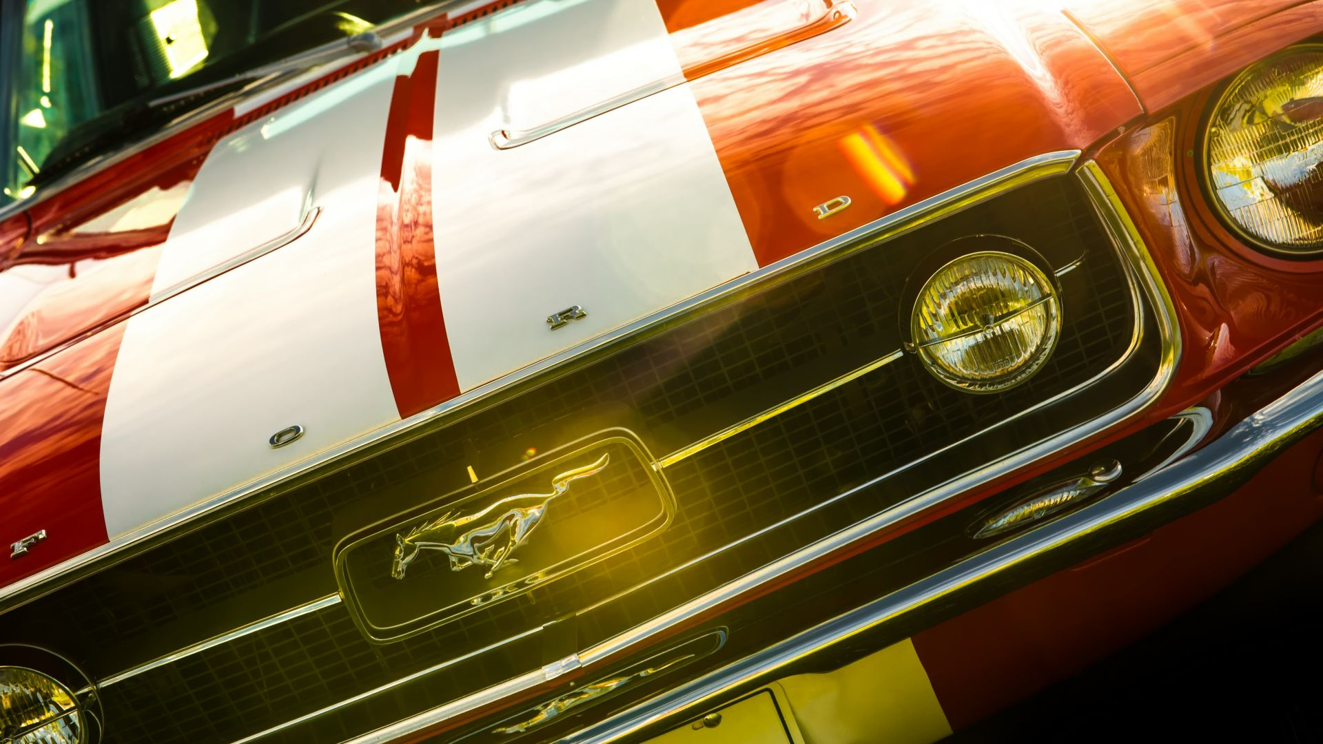 Wallpaper Ford mustang Car Front View
