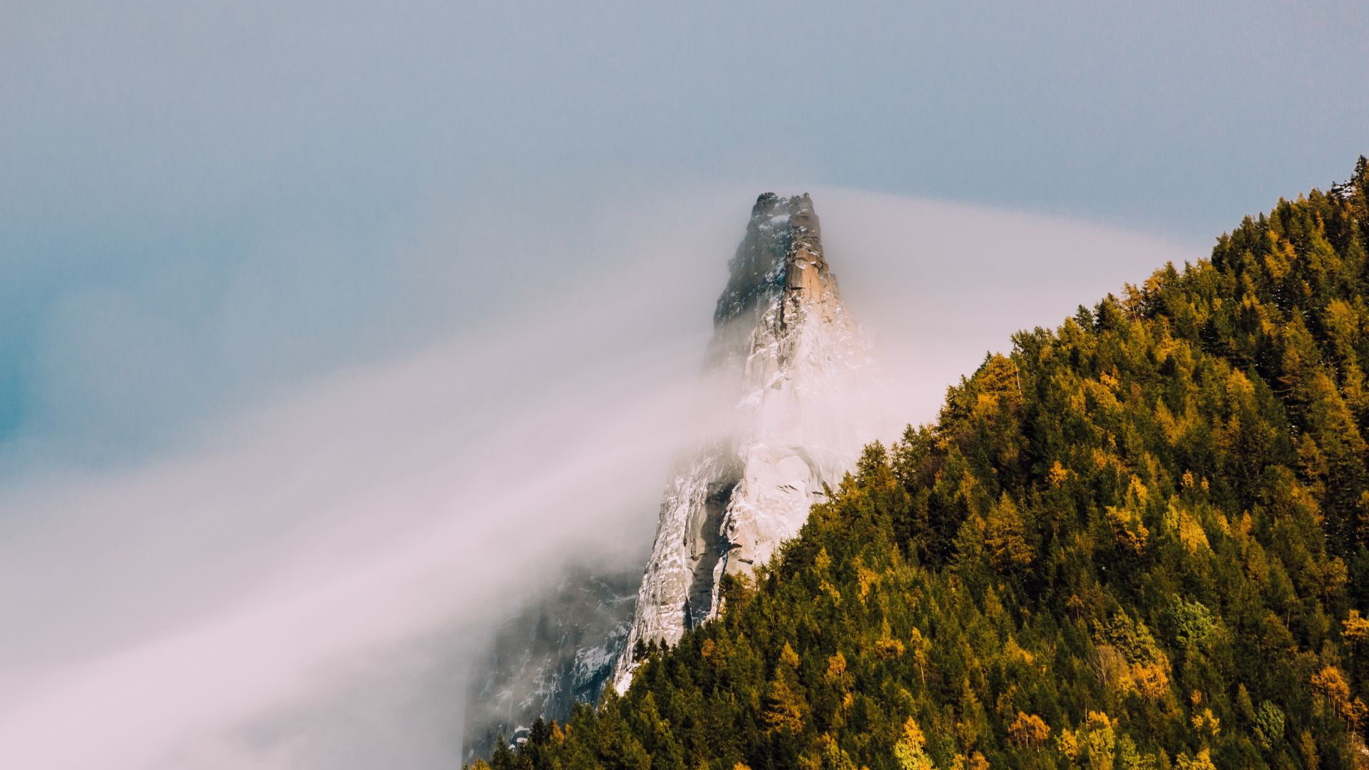 Wallpaper Mountain cliff, fog, tree, forest, nature