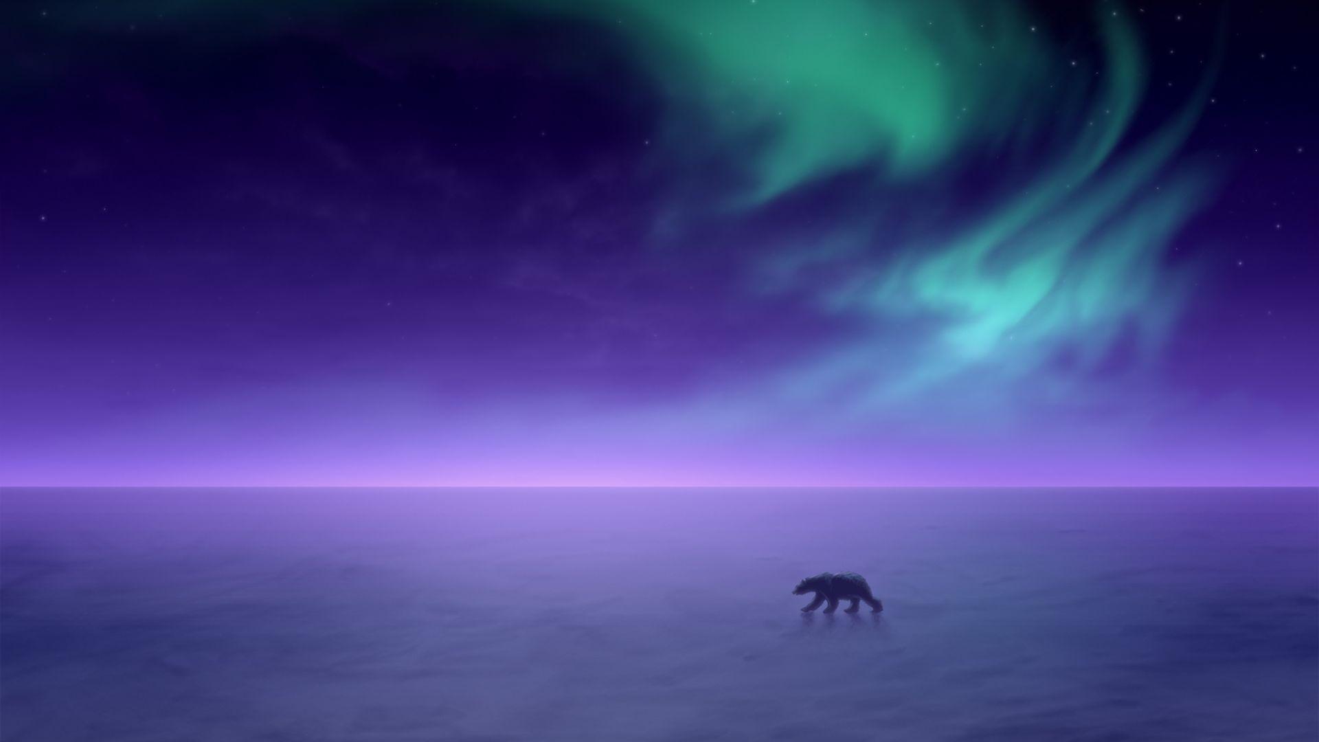 Wallpaper Polar bear, aurora, borealis, northern lights