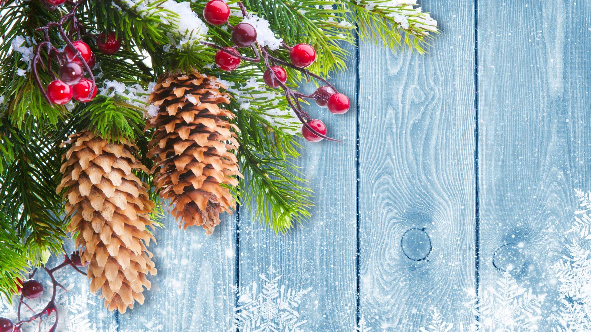 Wallpaper Christmas decorations, xmas tree, holiday