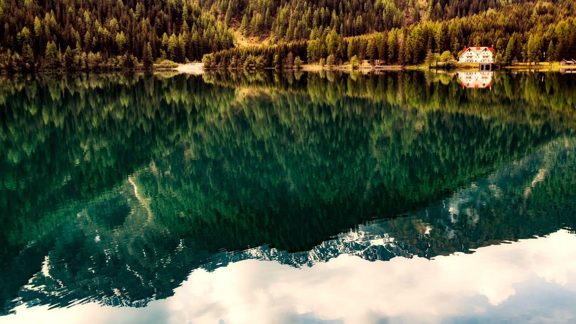Wallpaper Lake, tree, reflections, nature