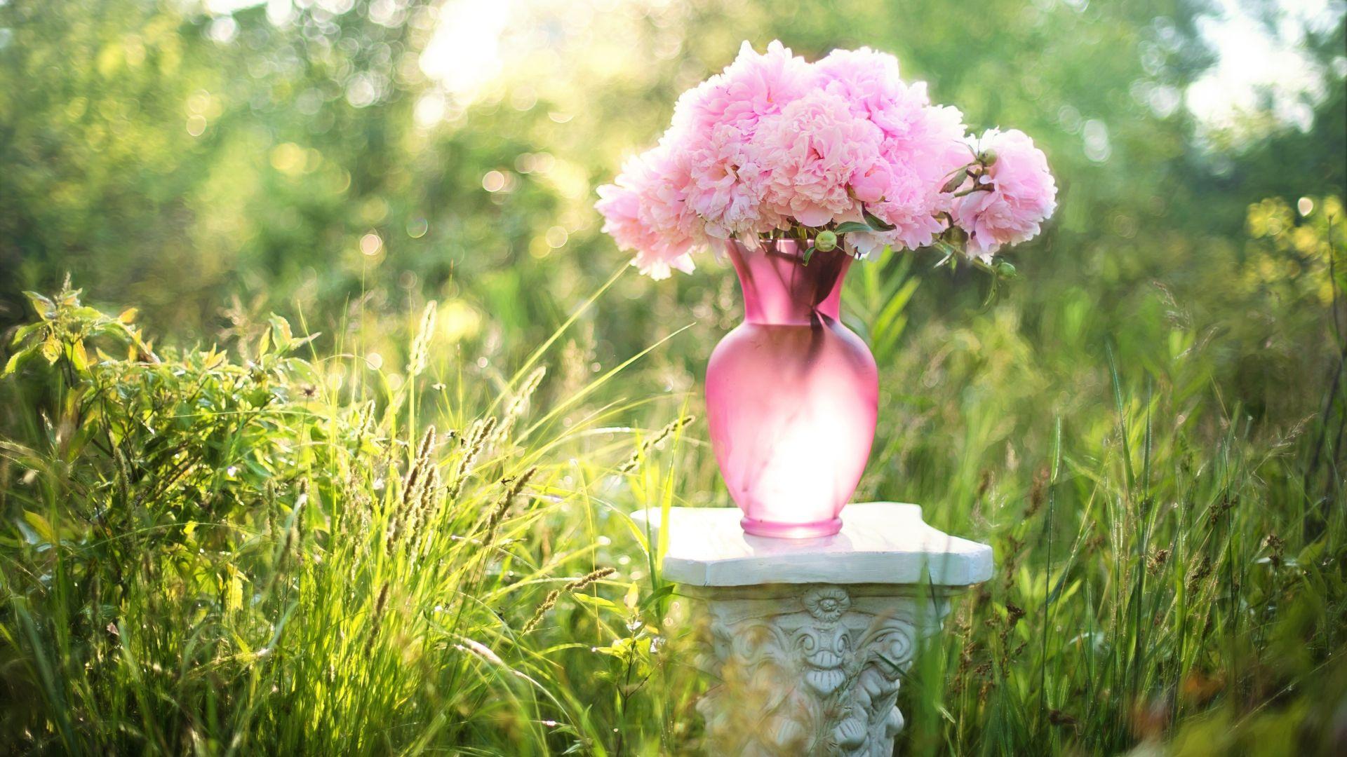 Flowers, bouquet, vase, pink flowers, grass