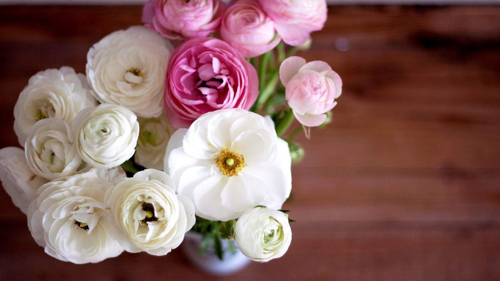 Wallpaper Ranunculus, Buttercup flower bouquet