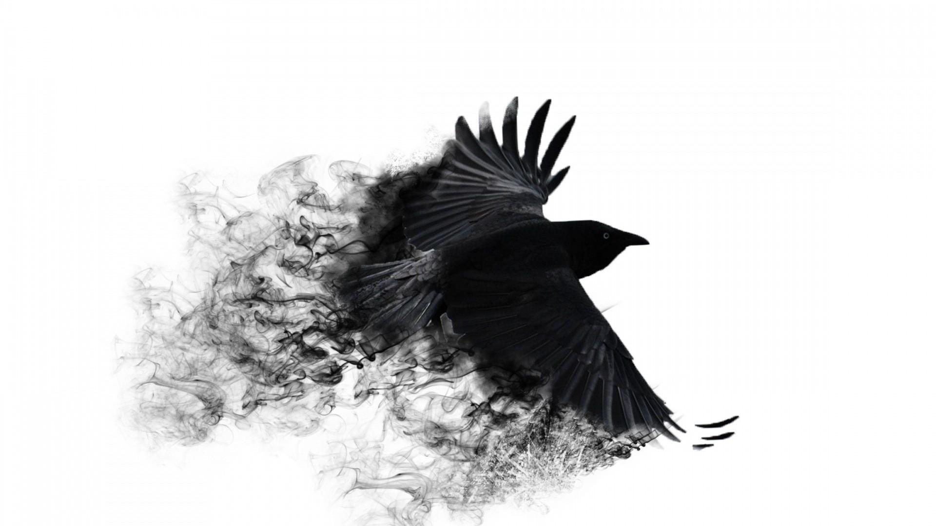Wallpaper 3D crow bird abstract