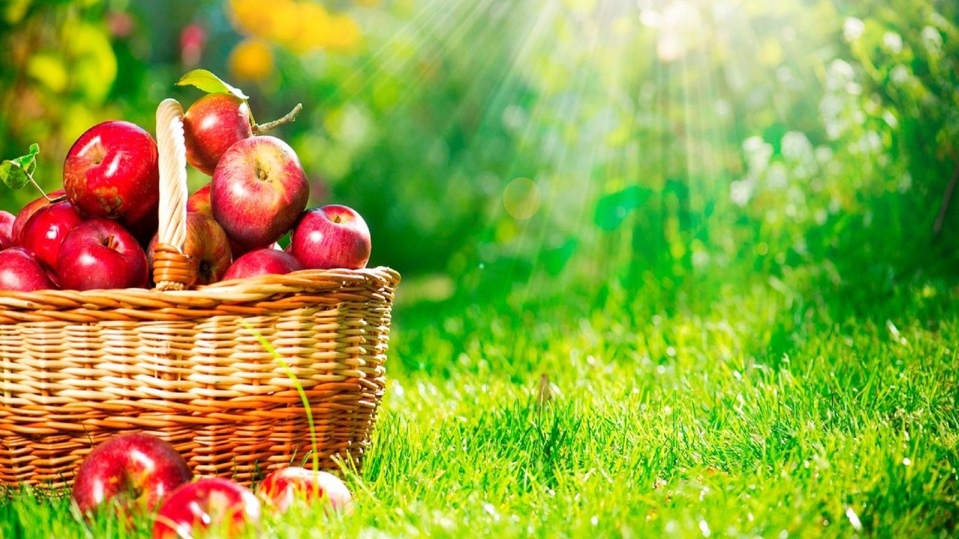 Wallpaper Apple basket