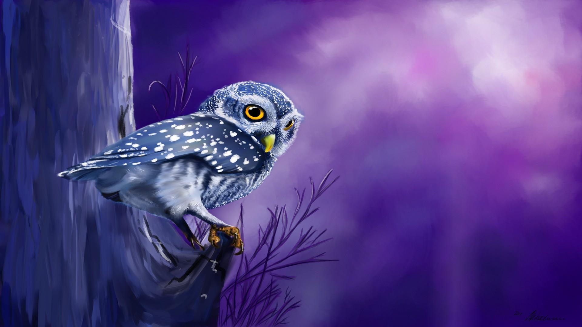 Wallpaper Owl bird, night, watch, art