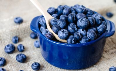 Blue fruits, berries, blueberry