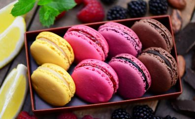 Macarons, colorful cookies, sweets, dessert