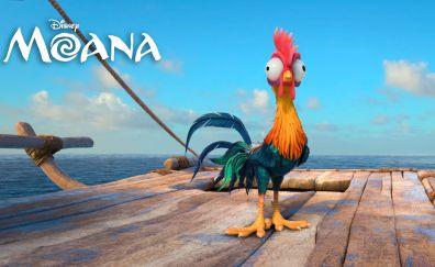 Heihei of moana animation movie 2016