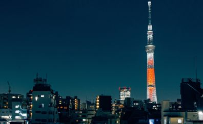 Tokyo city, Tokyo tower, night