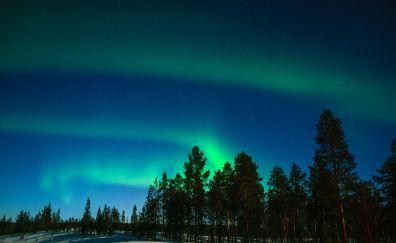 Aurora, borealis, night, nature