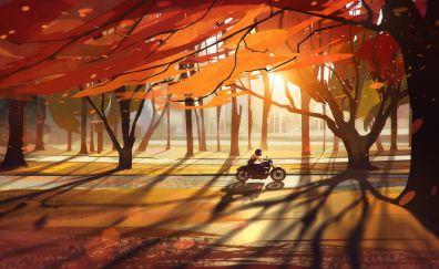 Sunset bike illustration artwork