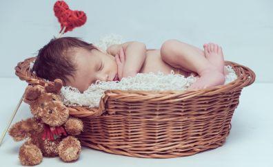 Newborn baby, basket, kid, child, cute, 4k