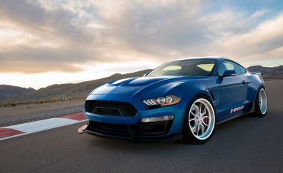 2018 Shelby 1000, sports, muscle car, 4k