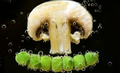 Mushroom, peas, water, dipping, bubbles