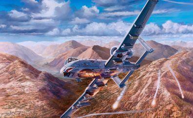 Jet fighter, warplane, video game, 4k