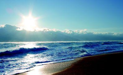 Palm coast beach, florida beach, nature