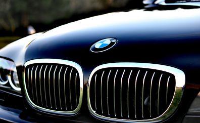 BMW hood, logo