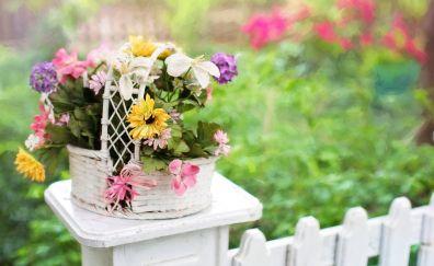Flowers, basket, blossom