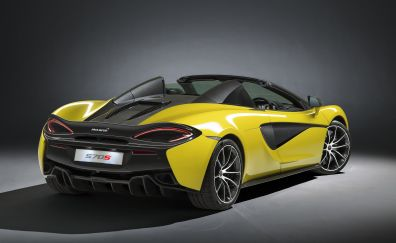 2018, McLaren 570S Spider, yellow, sports car, rear view