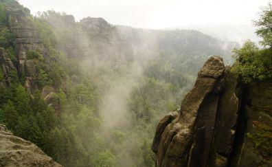 Cliff, valley, tree, mist, fog, nature