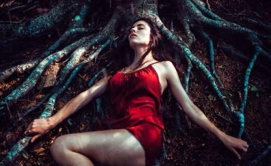 Red head, lying down, tree trunk
