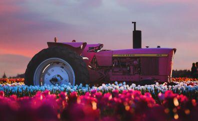 John Deere Tractor flower farm, 4k