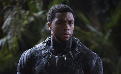 Chadwick boseman, black panther, 2018 movie, 4k