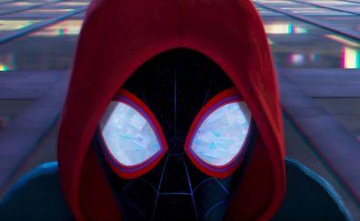 Spider-Man: Into the Spider-Verse, movie, 2018