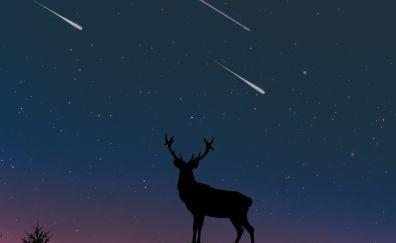 Deer, moon, night, artwork