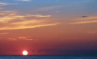 Sun, sunset, skyline, sea