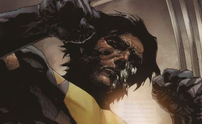 Wolverine, superhero, x-men, marvel comics, 4k