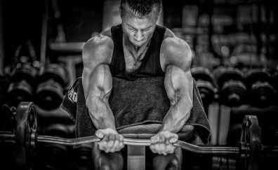 Bodybuilding, bodybuilder, fitness, gym, monochrome