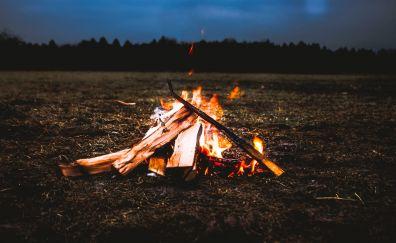 Campfire, fire, evening