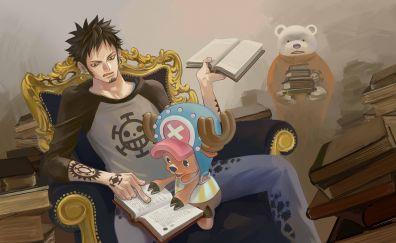 Tony Tony Chopper, Trafalgar D. Water Law, Trafalgar Law, One Piece, anime, anime boy